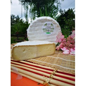 FROMAGE MIJOULE (Larzac)